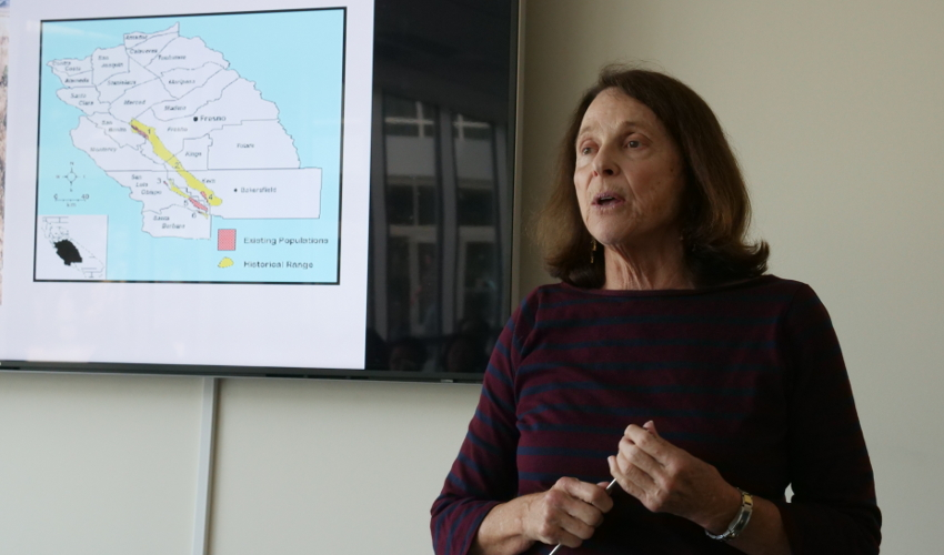 Jan Randall speaks in front of a screen depicting a map.