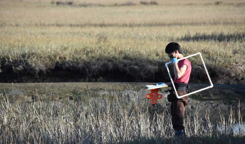Masked person in red shirt holding research equipment, surrounded by vegetation and water