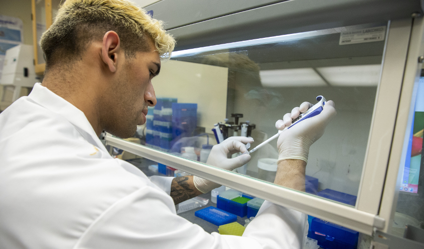Student wearing lab coat and gloves pipetting samples behind a glass partition