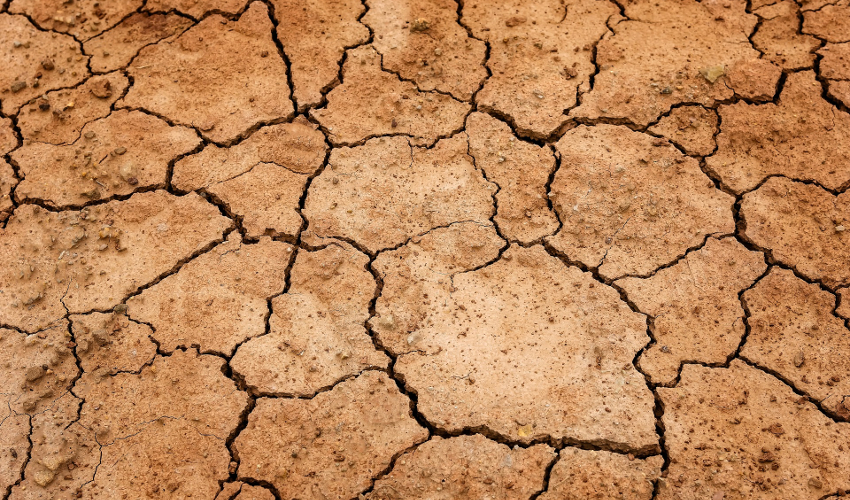 Dry, cracked earth