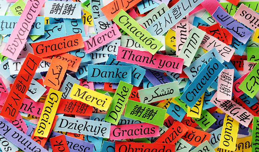 """Strips of different colored paper scattered everywhere. On each paper is a word for """"thank you"""" in different languages."""