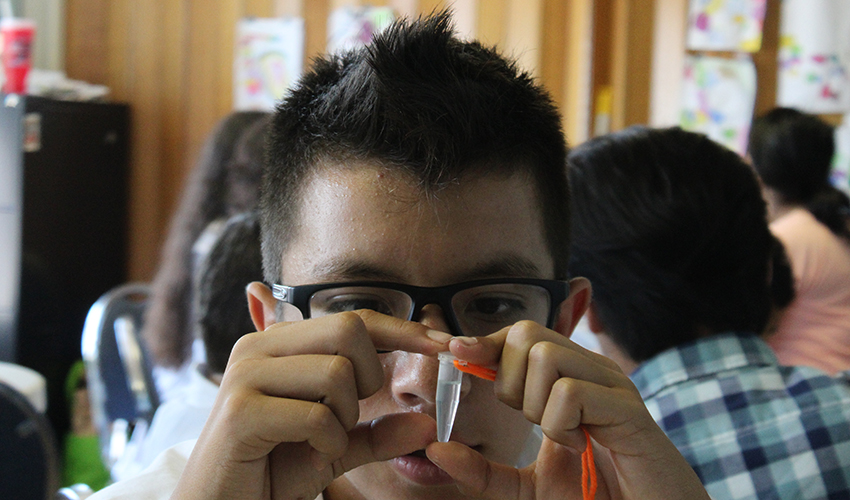 Boy stares at DNA inside a plastic vial