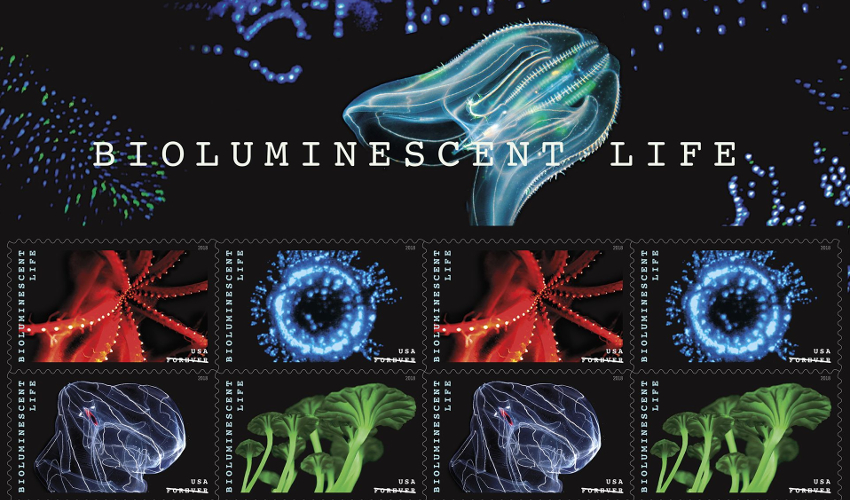 A book of postage stamps featuring various bioluminescent organisms in blue, green and red on a black background