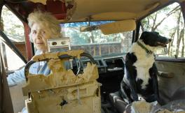 Woman in the driver seat of a car with a dog in the passenger seat