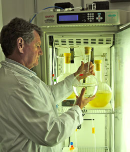 Photo of William Cochlan examining a glass jar containing phytoplankton cells.