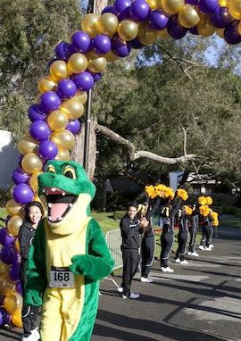 Photo of the SF State Gator running across the finish line
