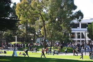 Photo of students in the Main Quad