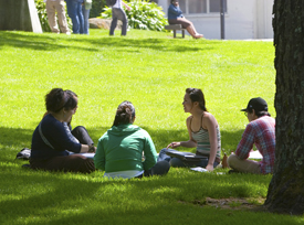 Photo of four students sitting on the grass quad on a summer day
